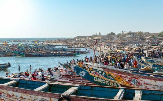 Maladie mystérieuse : Les pêcheurs marchent le 4 décembre prochain