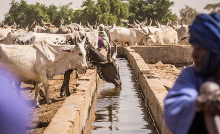 Lancement d'un programme visant la résilience des populations rurales
