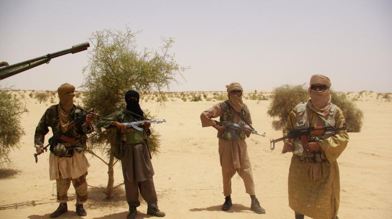Sahel : le Conseil de sécurité de l'Onu préoccupé par la montée du Jihadisme