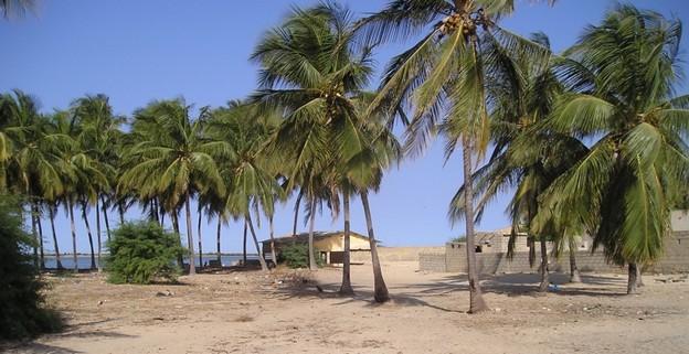 Colère dans le Gandiolais : des populations s'insurgent contre un « scandale foncier ».