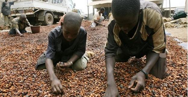 Travail précoce: 2,7 millions d'enfants actifs au Sénégal