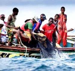 Matam : la longue agonie de la pêche fluviale