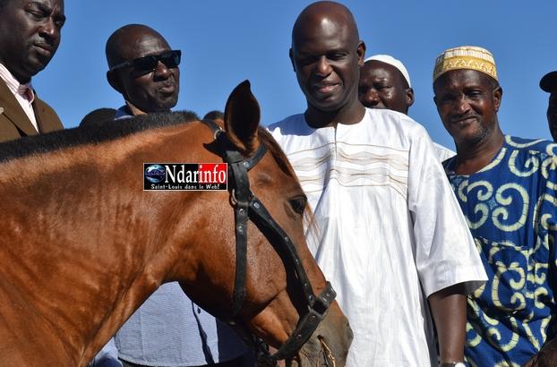 Saint-Louis - Assainissement : Mansour Faye offre 5 chevaux aux Gie Cetom.