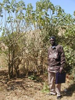 Premier lauréat des énergies renouvelables en Afrique : Cheikh Guèye, un inventeur écolo