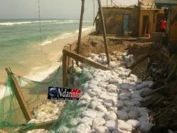 """Saliou Ndiaye : """"Les menaces sur les côtes sont autant de défis à relever"""""""