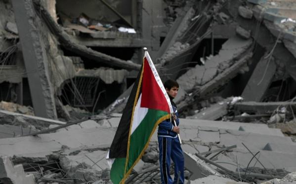 GAZA : Le massacre rituel - Par Mamadou Ndiaye Ndouck