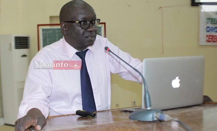 ENTREPRENEURIAT - UGB: l'agrobusiness est un moyen d'autonomiser la jeunesse (économiste)