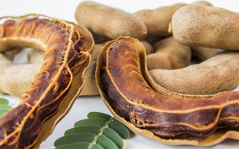 Santé : Le tamarin et ses nombreuses vertus !