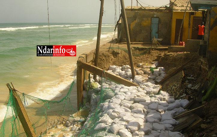 Sénégal : Saint-Louis en voie de disparition : L'avancée de la mer menace d'engloutir la ville!