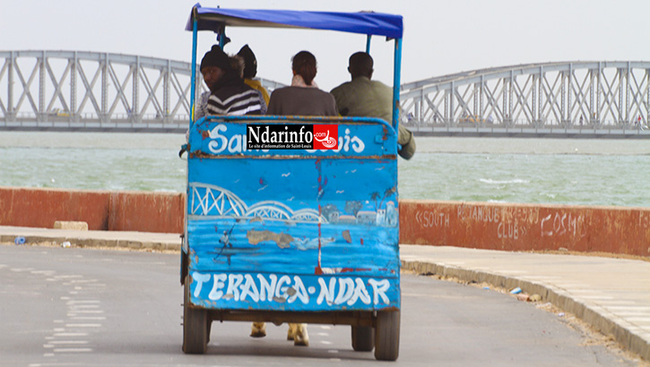 Au delà des impacts sur le tourisme, la portée sociale et économique, pour les sénégalais de l'extérieur, des mesures présidentielles pour la relance du secteur du tourisme au Sénégal. Par Par Aly SINE, Chercheur à l'UGB