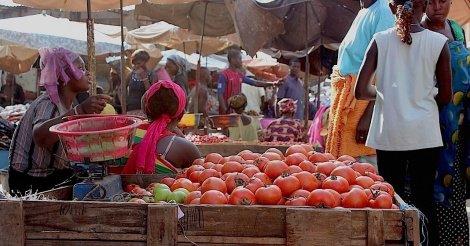 Sénégal : poursuite du repli de l'indice du chiffre d'affaires du commerce