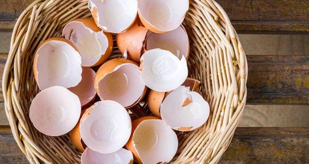 Ne jetez plus jamais les coquilles d'œuf !