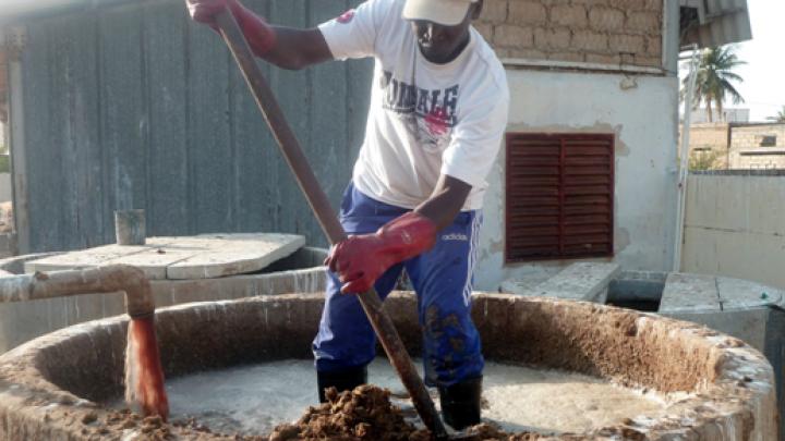 Un agent de l'abattoir déverse des déchets organiques dans un bac de remplissage.