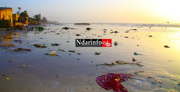 Berges de Pilote Barre: Crédit Photo: Ndarinfo.com