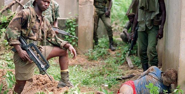 Bignona: L'armée détruit des champs de chanvre et tue plusieurs rebelles