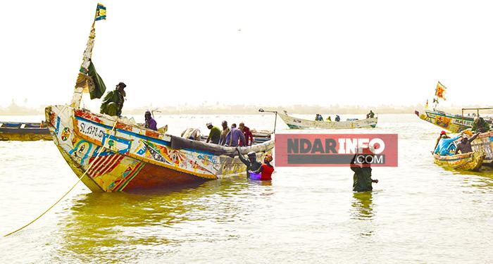 ARRAISONNEMENT D'UNE PIROGUE À NDIAGO : le film de l'arrestation des 5 pêcheurs.