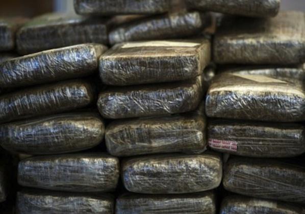 Louga : un réseau de trafiquants de drogue démantelé par la gendarmerie