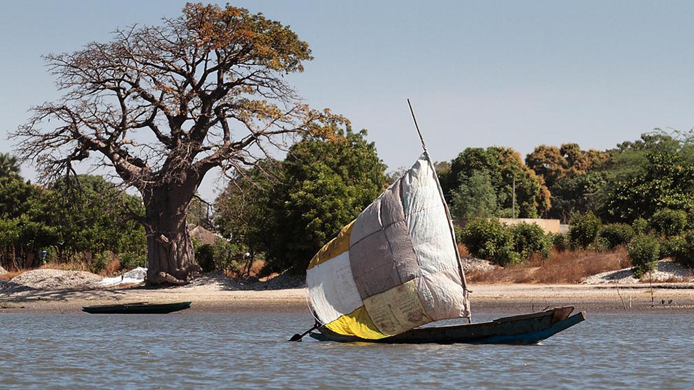 Non à la mort programmée du fleuve Sénégal et de ses affluents. Par Dr Ousmane Aly PAME
