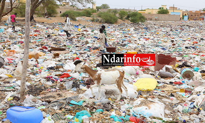 Dépotoirs sauvage d'ordures ménagères à Dioubel, un quartier de la Commune de ROSSO( Wilaya du TRARZA/Mauritanie). Crédit Photo: NdarInfo