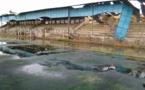 Stade Me Babacar SEYE : des vies sauvées, de justesse.