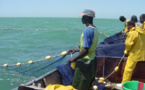 Vaste opération de recensement des pêcheurs sénégalais établis en Mauritanie