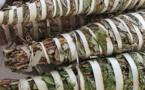 La Kinkéliba : La plantes qui donne longue vie!