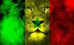 Un Sénégalais, une solution … Par Abdoul Magib DIOUF