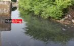 BANGO : Un canal d'irrigation éclate, plusieurs maisons envahies par les eaux (vidéo)