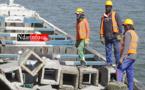 Saint-Louis : 410 blocs de récifs artificiels immergés dans l'Aire Marine Protégée (vidéo)
