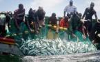 Saint-Louis : l'absence d'accord de pêche entre le Sénégal et la Mauritanie freine les performances de la composante artisanale ( DPEE )