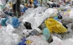 Déchets Plastiques - 5 millions de sachets plastiques utilisés chaque jour par les ménages sénégalais