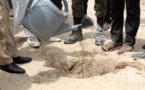Journée Nationale de l'arbre 2017 à Dièle Mbame : retour sur le film de l'évènement ( vidéo)