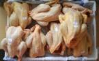 Sénégal : Il n'y aura pas de pénurie de poulets pour la Korité