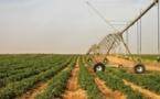 Investissement dans le secteur agricole : Des acteurs relèvent des disparités
