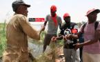 BANGO : le fleuve envahi par les ordures. Les populations crient au danger (vidéo)