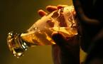 SANTE: L'ALCOOL TUE PLUS QUE LE SIDA, LA TUBERCULOSE OU LA VIOLENCE, PRÉVIENT L'OMS