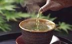 Maigrir grâce au thé