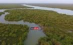 Top 5 des plus belles mangroves de Saint-Louis (vidéo)