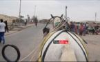 Langue de Barbarie : Plus d'excréments de chevaux sur la voie publique (vidéo)