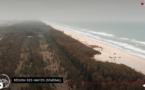 Ils sauvent la planète : les arbres du Sénégal contre l'avancée de la mer