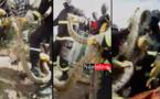 Berges de Guet-Ndar : un serpent crée la panique (vidéo)