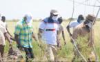 VAP/ Plus de 6 millions FCFA investis par les Patriotes de Saint-Louis : Ousmane SONKO exprime sa vive satisfaction (vidéo)