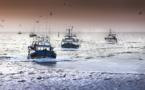 Pillage ressources halieutiques: l'UE veut un nouveau partenariat de 10.000 tonnes de poisson par an