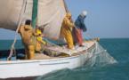 Exclusif: La Mauritanie accorde 40.000 tonnes par an et autorise 300 embarcations sénégalaises.
