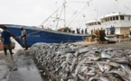 Mauritanie : Une autorité alerte sur un pillage des ressources halieutiques par les Chinois
