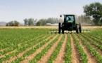 """Plus de 960.000 hectares aux multinationales : """"Les Sénégalais, bientôt étrangers chez eux"""""""
