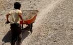 Saint-Louis : L'ONG Concept en croisade contre le travail des enfants.