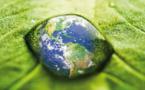 Saint-Louis, première ville africaine hôte d'un Conseil d'administration de Wetlands international.