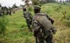 RDCongo: combats dans l'est entre l'armée et un groupe rebelle ougandais