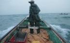 Raréfaction du poisson: les pêcheurs de Guet Ndar dans la détresse.